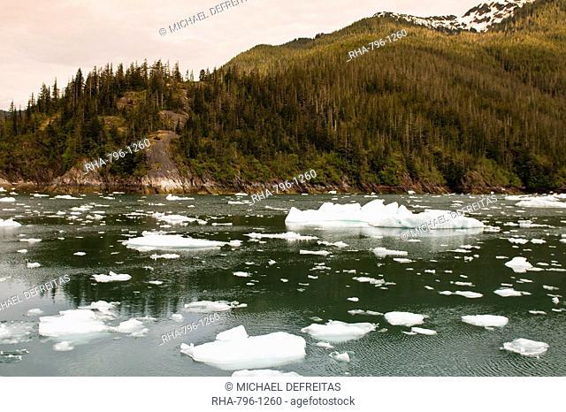 Iceberg in LeConte Bay, Southeast Alaska, Alaska, United States of America, North America