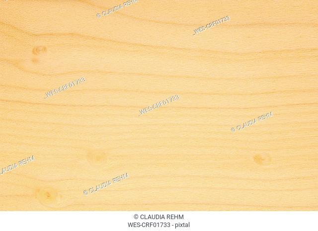 Wood surface, Cucumber Tree Wood Magnolia acuminata full frame