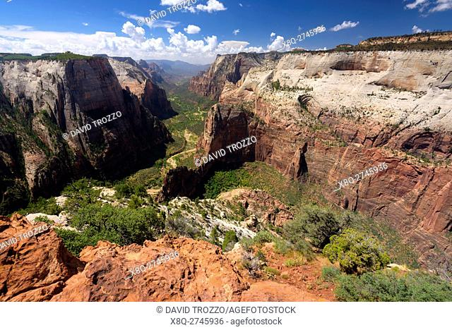 View from Observation Point, Zion National Park, located in the Southwestern United States, near Springdale, Utah