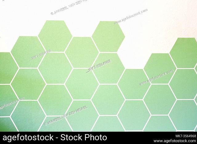 Retro modern green Hexagon tiled wall with half white wall, modern background texture, new interior beauty