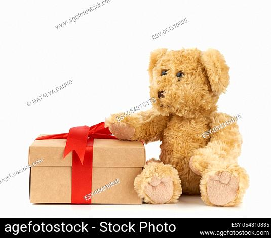 cute little brown teddy bear holds a brown box with a red ribbon on a white background