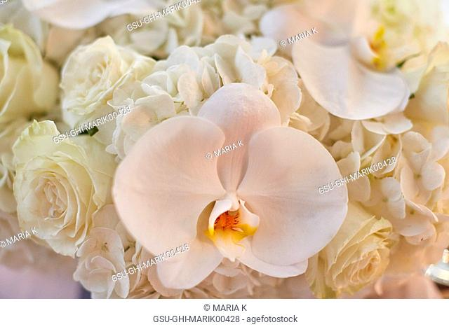 Wedding Bouquet of White Orchids and Roses, Close-up