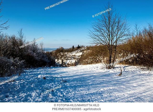Hoher Hagen, Samtgemeinde Dransfeld, Göttingen district, Lower Saxony, Germany / Hoher Hagen, Samtgemeinde Dransfeld, Landkreis Göttingen, Niedersachsen