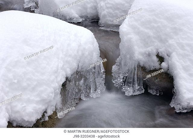 Icicles by forest stream, close up. Baden Wuerttemberg (Baden-Wurttemberg), Germany, Europe