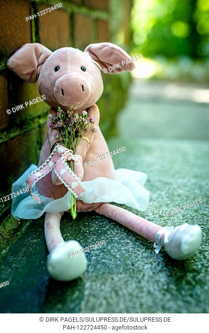 Symbolic photo on the subject of wedding and marriages. A lucky pig of cloth with the wedding rings. The wedding rings are a symbol of loyalty to the supporting...