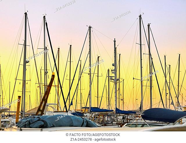 Boats at the harbour. Denia. Alicante. Valencia Community. Spain