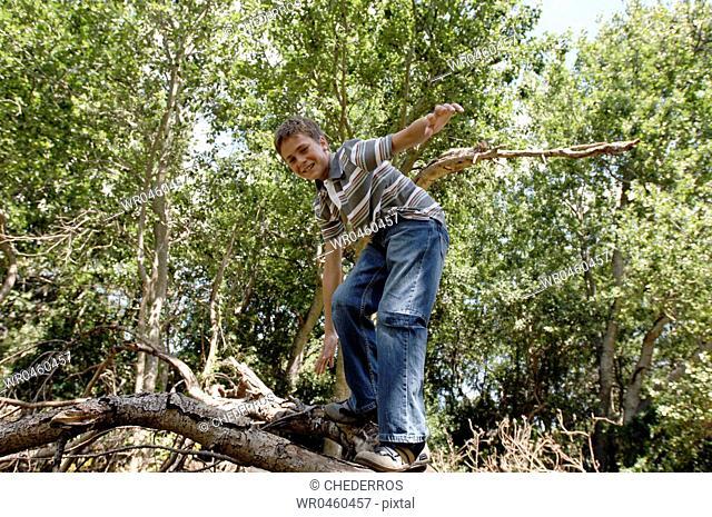 Side profile of a boy climbing a tree