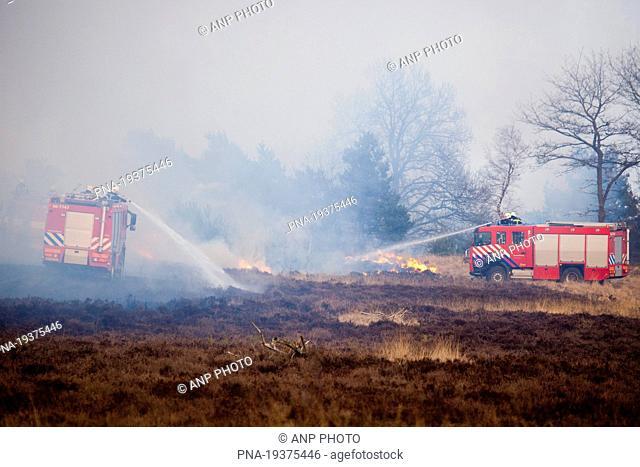 Hoog Buurlose Heide, Radio Kootwijk, Veluwe, Gelderland, Guelders, The Netherlands, Holland, Europe