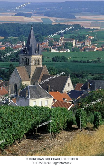 Ville-Dommange, wine growing village on the Montagne de Reims area, Marne department, Champagne-Ardenne region, France, Europe