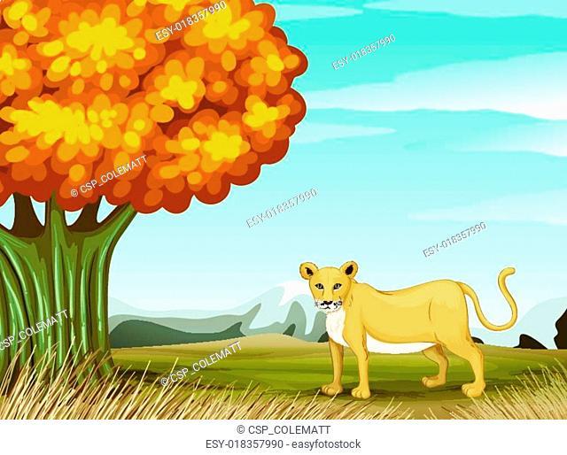 A cheetah near the big tree