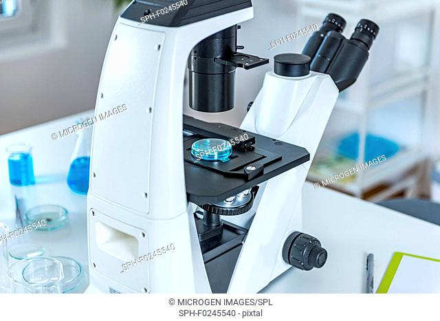 Microscope with sample in laboratory