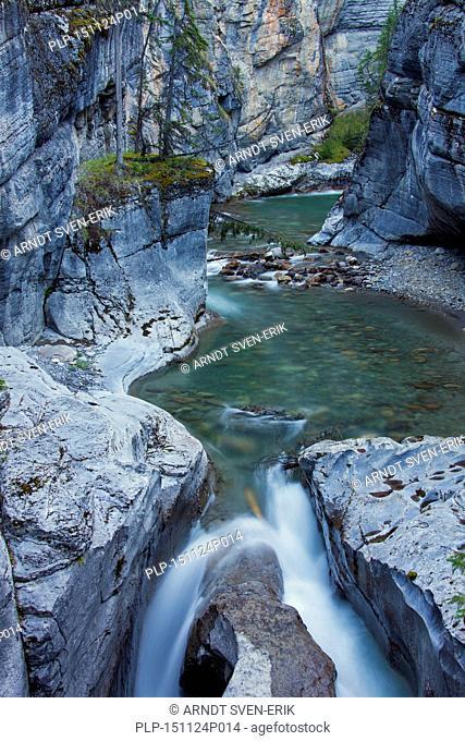 Creek in the Maligne Canyon, Jasper National Park, Alberta, Canadian Rockies, Canada