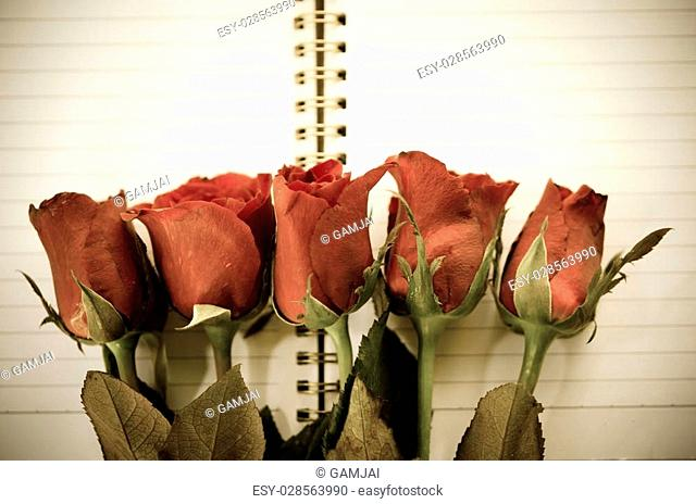 Vintage style - Red rose flower and open Notepad book