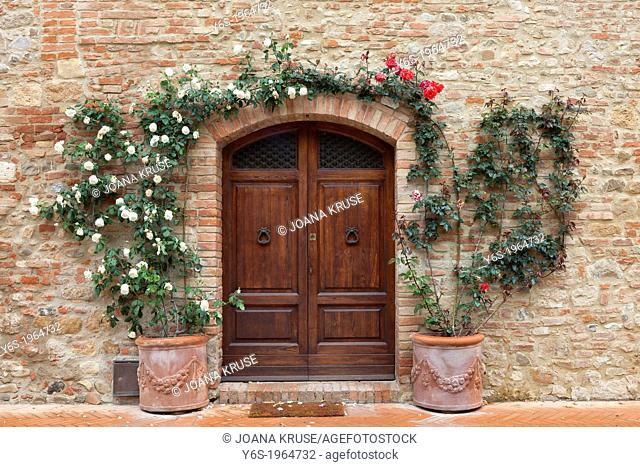 old wooden door with roses in Tuscany, Italy