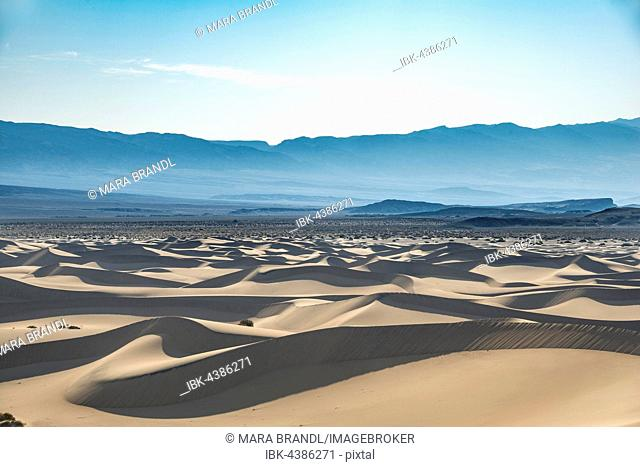 Mesquite Flat Sand Dunes, sand dunes, Death Valley National Park, California, USA