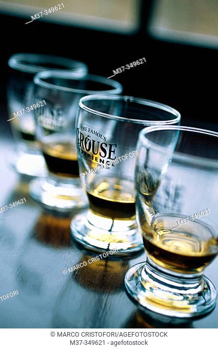Taste of The Famous Grouse blend, produced at Glenturret whisky distillery, from the Edrington group. Scotland. UK