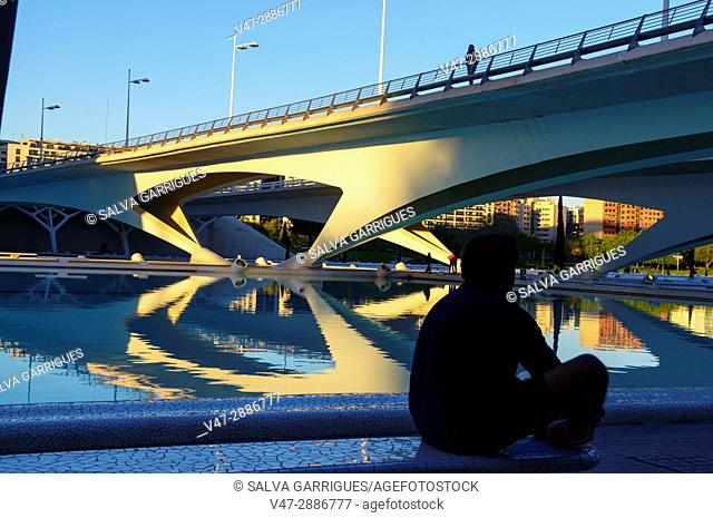Monteolivete bridge, City of Arts and Sciences, Valencia, Spain, Europe
