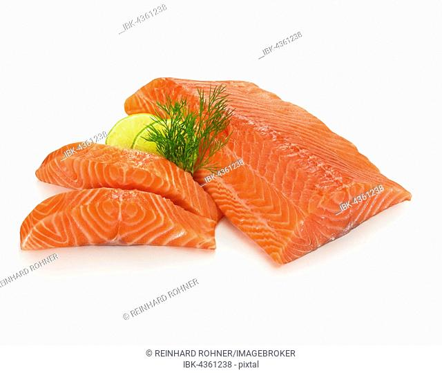 Fillet of Atlantic salmon (Salmo salar), slices of lime (Citrus aurantiifolia) and dill (Anethum graveolens), white background