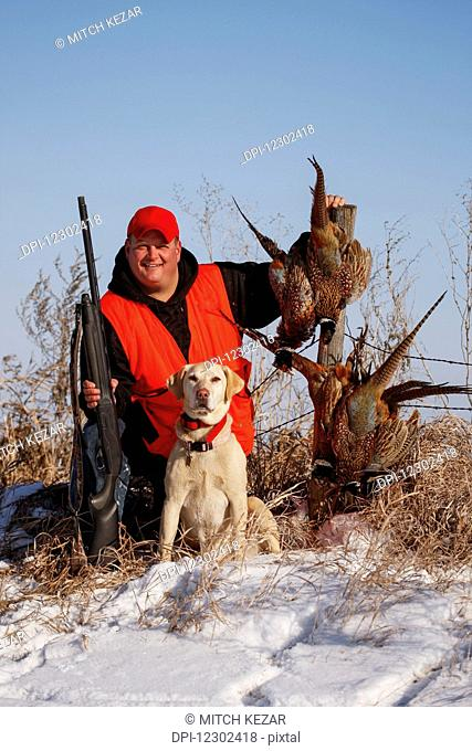 Pheasant Hunter In Field With Yellow Lab