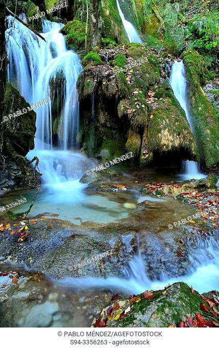 Toberia waterfall in a beech wood of Andoin, Alava, Spain