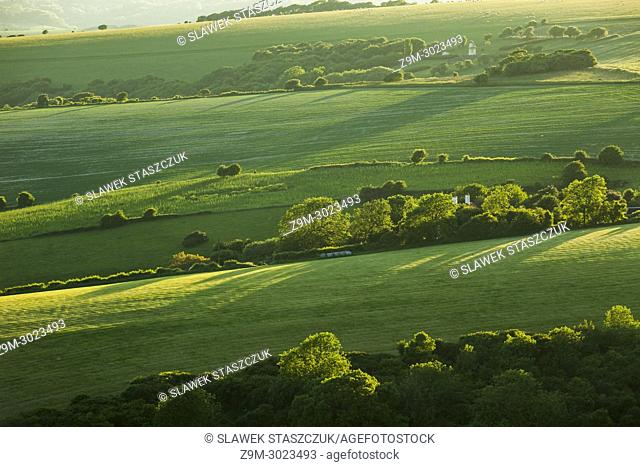 Spring evening in South Downs National Park, East Sussex, England
