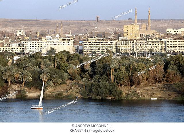 Overlooking the river Nile at the southern city of Aswan, Egypt, North Africa, Africa