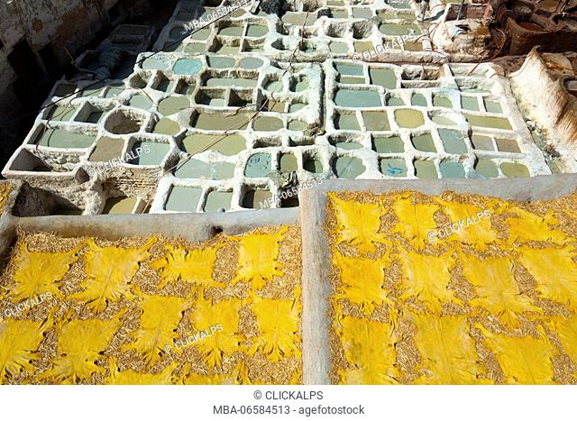 North Africa, Morocco, Fes district, Fez Tannery, Chouara Tannery, Leather processing