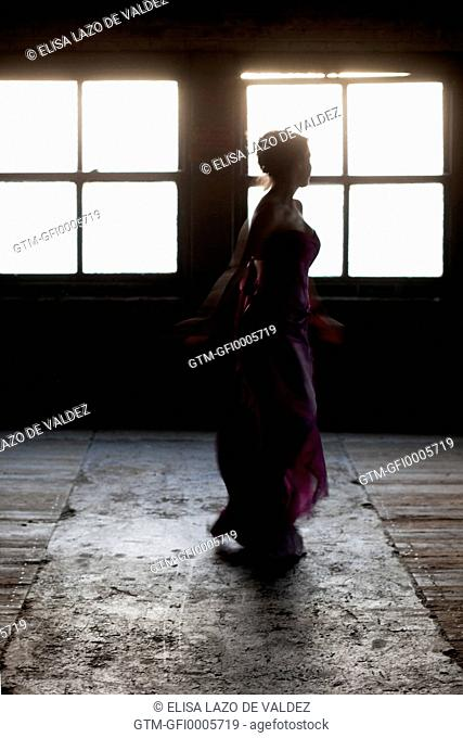 Silhouette of Woman in Satin Gown