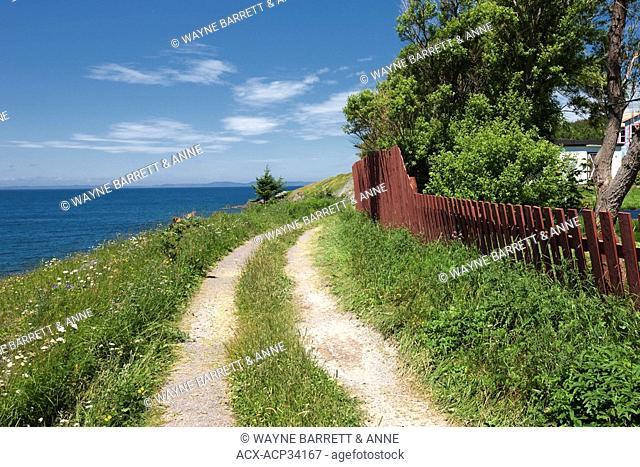 Clay road and fence along coastline in New Perlican, Newfoundland and Labrador, Canada