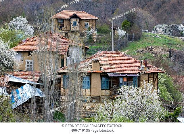 Mountain village in Pirin mountains, traditional frame-work houses and flowering fruit trees, South Bulgaria