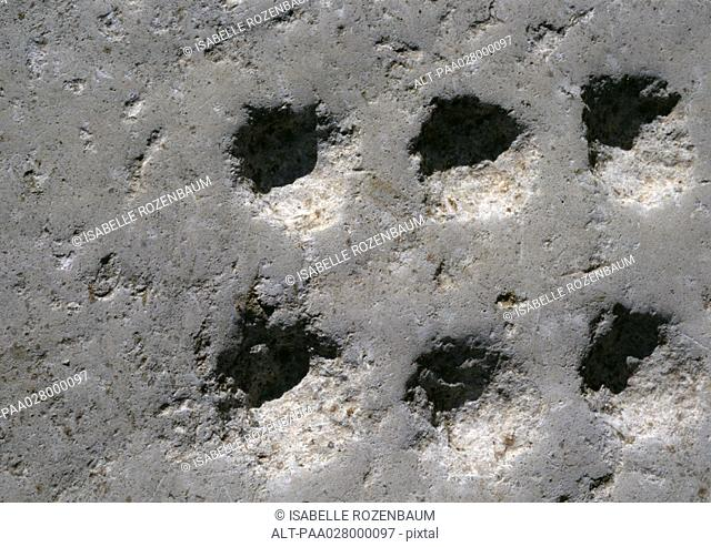 Holes carved into stone, close-up