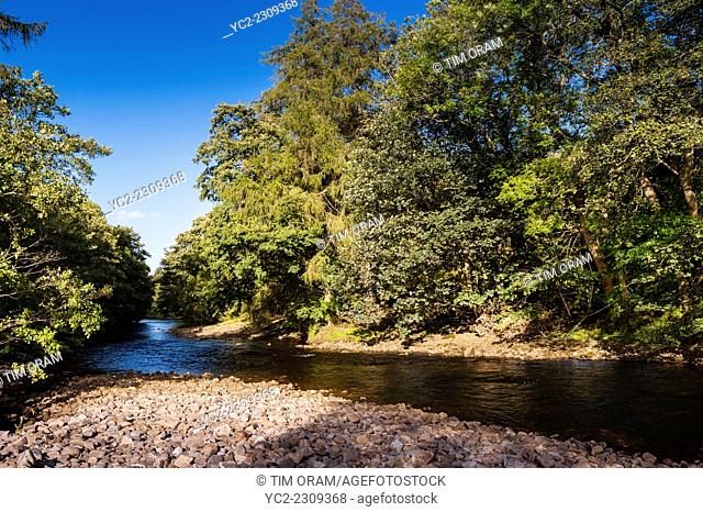 The river Swale at Swaledale in the Yorkshire Dales in Yorkshire , England , Britain , Uk
