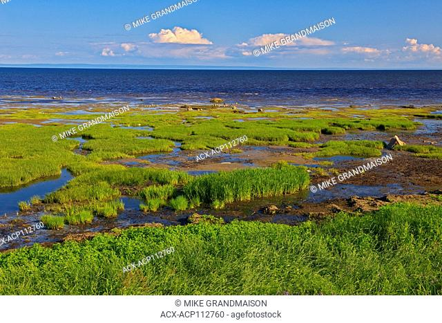 Rocky shoreline on the Gulf of St. Lawrence, Longue-Rive, Quebec, Canada