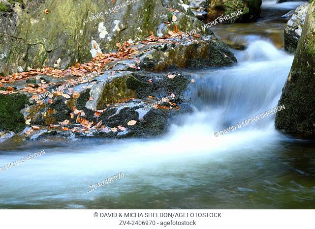 Detail of flowing waters of a little River in autumn in the bavarian forest, Bavaria, Germany