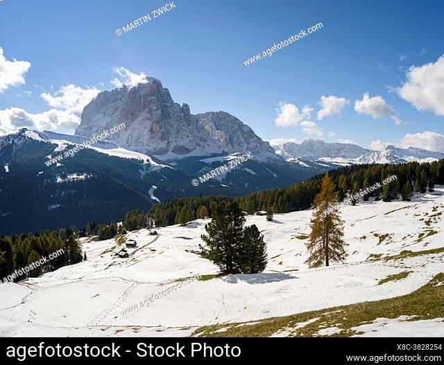 Mount Langkofel, Sasso Lungo, in the dolomites of South Tyrol - Alto Adige seen from Groeden Valley - Val Gardena. The dolomites are listed as UNESCO World...
