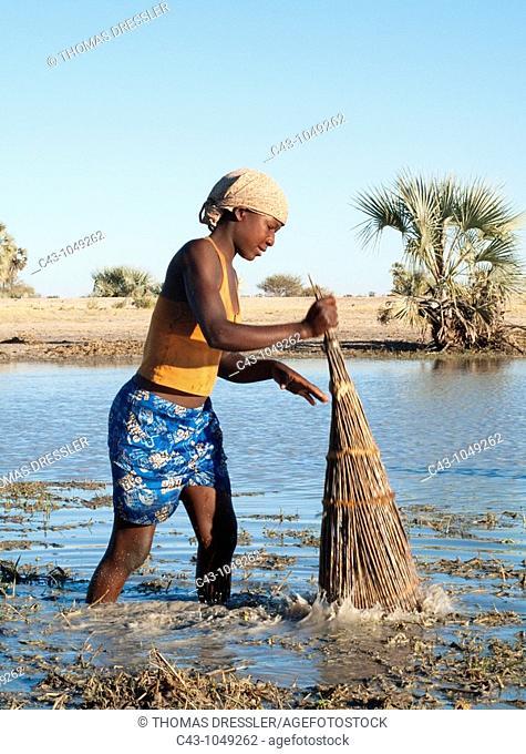 Namibia - Owambo girl fishing in a shallow pool oshana which characterise the region  In the background Makalani palm trees Hyphaene petersiana  Omusati region