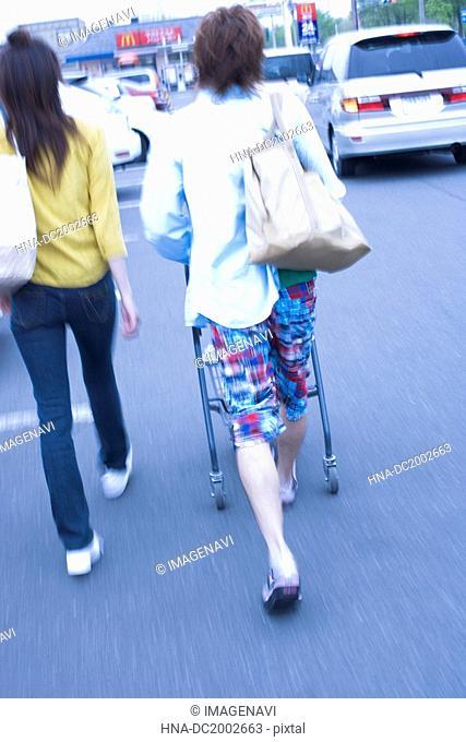 Women Pushing Shopping Cart,rear view