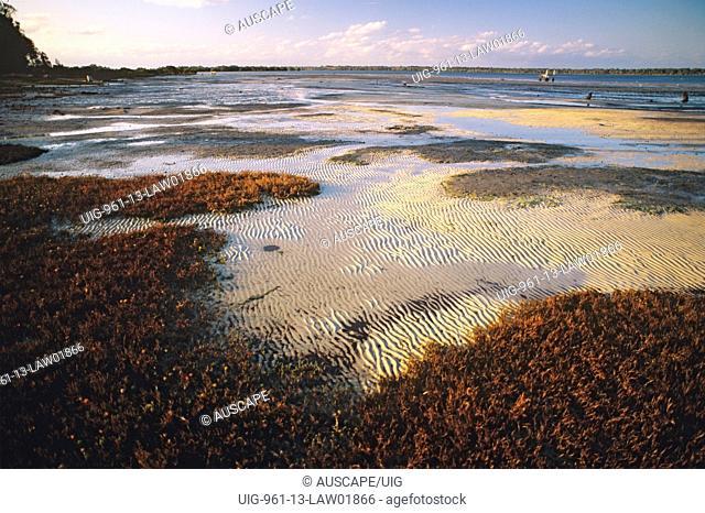 Sand and mud flats important bird and marine habitat, Pumice stone Passage Marine Park, Sunshine Coast, Queensland, Australia