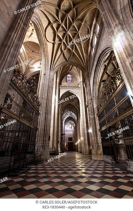 Side nave of Santa Maria cathedral, Segovia, Castilla-Leon, Spain