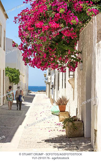 Couple walk in the shade down a narrow street overhung with Bougainvillea on the island of Tabarca Spain
