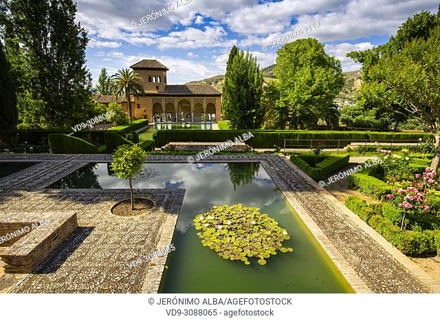 Torre de las Damas. Gardens, Alberca & fountains. El Partal, Nazaries palaces. Alhambra, UNESCO World Heritage Site. Granada City