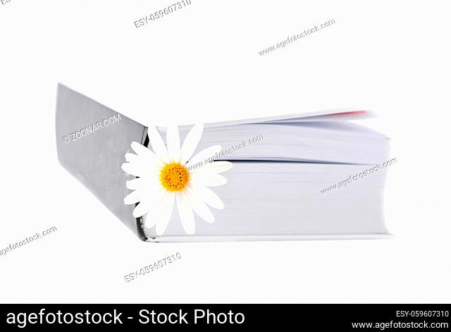 Summer belletristic. Book and daisy as a bookmark