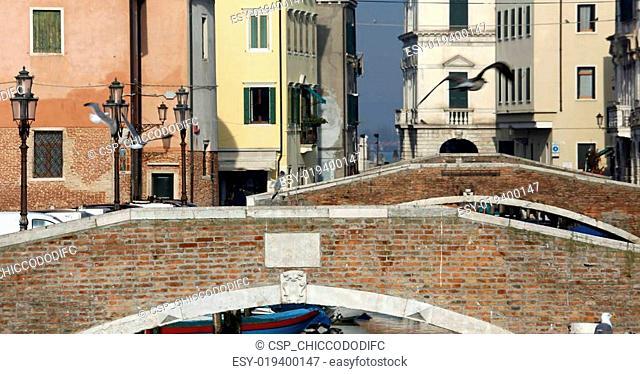 bridges of the city of chioggia, province of Venice