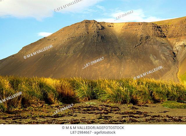 Iceland, Skutustadir, Myvatn, Krafla-volcanic area