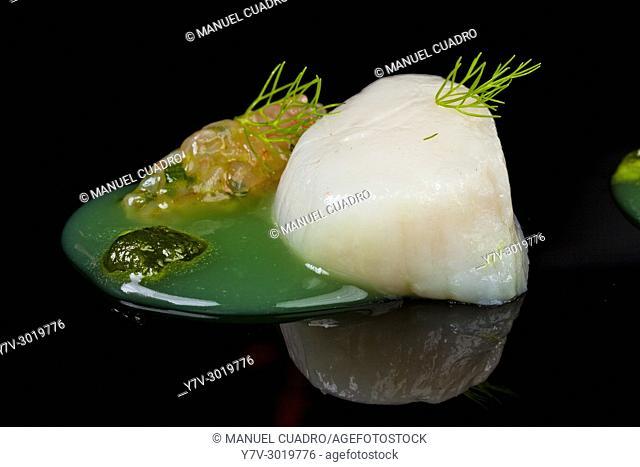 Vieira marinada sobre crema de hinojo / Scallop marinated on fennel cream