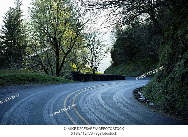 Historic roadway through the Columbia River Gorge