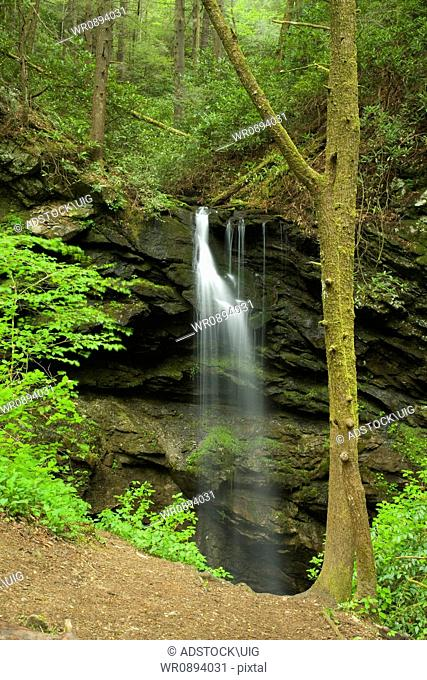 Waterfall, Spring, Whiteoak Sink, Great Smoky Mountains National Park, TN, USA