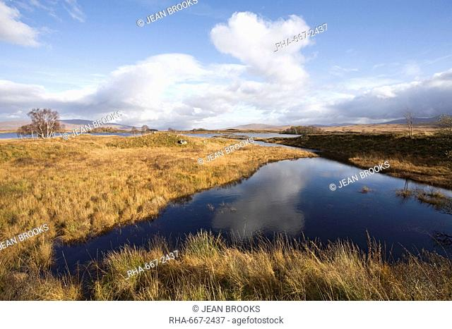 Loch Ba' in autumn, Rannoch Moor, near Glencoe, Highlands, Scotland, United Kingdom, Europe