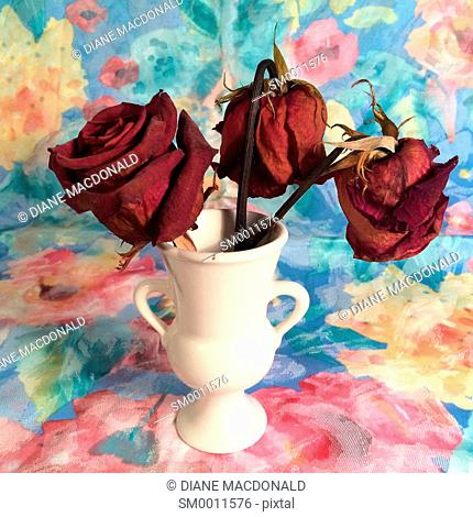 Three dried red roses in a vase