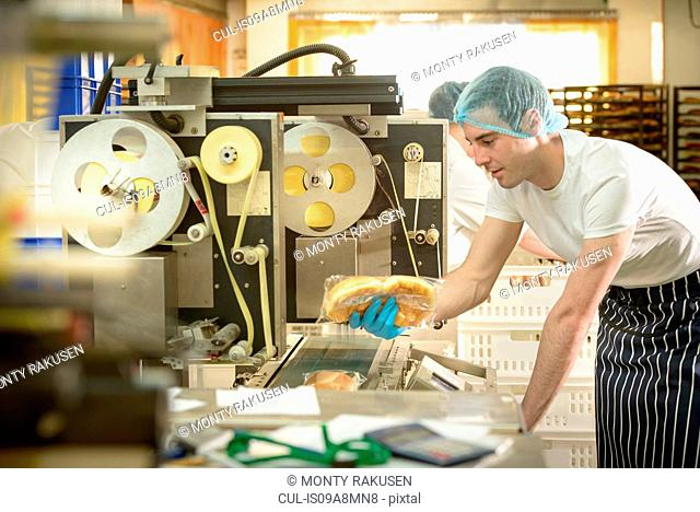 Baker inspecting packaging on bread rolls production line bakery